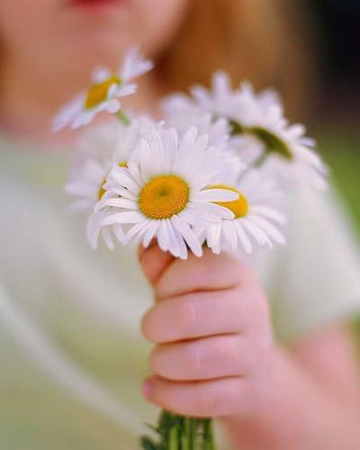 pikkelysömör kezelése a tavaszi véleményeken